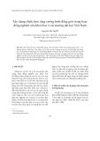 """Báo cáo """" Xây dựng chiến lược tăng cường bình đẳng giới trong hoạt động nghiên cứu khoa học ở các trường đại học Việt Nam """""""