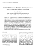 """Báo cáo """"Numerical simulations of overland floods in urban areas using a conservative Godunov-type scheme """""""