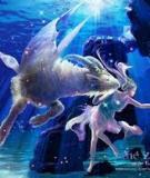 Nam Dương / Ma Kết / Dê Biển – Capriconus (22/12 – 20/01)