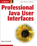 Profeesional Java user interfaces