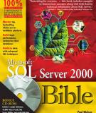 Microsoft SQL Server 2000 Bible