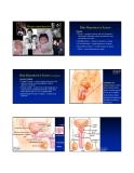 Bài giảng: Human reproduction