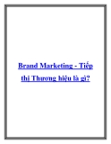 Brand Marketing - Tiếp thị Thương hiệu là gì