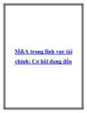M&A trong lĩnh vực tài chính: Cơ hội đang đến