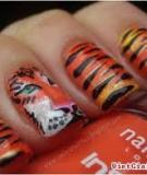 Vẽ nail con hổ tinh nghịch cho cô nàng cá tính