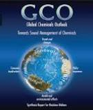 Global Chemicals Outlook - Trends and Indicators