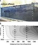 Monitoring and assessing processes of organic chemicals removal in constructed wetlands