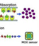 Volatile Organic Compound Detection Using Nanostructured Copolymers