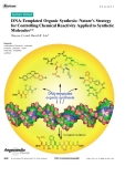 DNA-Templated Organic Synthesis: Natures Strategy for Controlling Chemical ReactivityApplied to Synthetic Molecules**