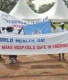 Nurses and Environmental Health:  Success Through Action