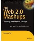 Pro Web 2.0 Mashups - Remixing Data and Web Services