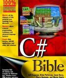 C# Bible