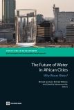 The Future Of Water In African Cities