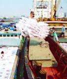 Cảnh báo rủi ro trong xuất nhập khẩu