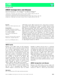 Báo cáo khoa học: ABCG transporters and disease