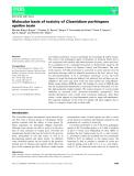 Báo cáo khoa học:  Molecular basis of toxicity of Clostridium perfringens epsilon toxin