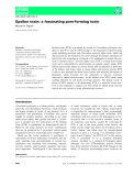 Báo cáo khoa học: Epsilon toxin: a fascinating pore-forming toxin