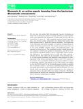 Báo cáo khoa học: Shewasin A, an active pepsin homolog from the bacterium Shewanella amazonensis