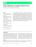 Báo cáo khoa học:  Unique modifications of translation elongation factors