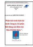 """Đề tài """"Phân tích tình hình tài chính Công ty Cổ phần Bất động sản Điện lực Dầu Khí Việt Nam PVL"""""""