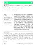 Báo cáo khoa học:  Seeking the determinants of the elusive functions of Sco proteins