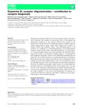 Báo cáo khoa học: Dopamine D4 receptor oligomerization – contribution to receptor biogenesis