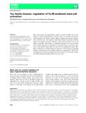 Báo cáo khoa học: Tec family kinases: regulation of FceRI-mediated mast-cell activation