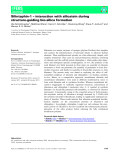 Báo cáo khoa học: cceleration of disulfide-coupled protein folding using glutathione derivatives