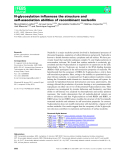 Báo cáo khoa học: N-glycosylation influences the structure and self-association abilities of recombinant nucleolin