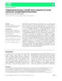 Báo cáo khoa học:  Trypanosoma brucei: a model micro-organism to study eukaryotic phospholipid biosynthesis