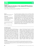 Báo cáo khoa học: TNFR1-induced activation of the classical NF-jB pathway Harald Wajant1 and Peter Scheurich2