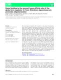 Báo cáo khoa học: Heme binding to the second, lower-affinity site of the global iron regulator Irr from Rhizobium leguminosarum promotes oligomerization