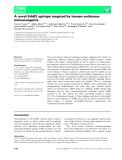 Báo cáo khoa học: A novel ErbB2 epitope targeted by human antitumor immunoagents