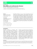 Báo cáo khoa học: MicroRNAs and cardiovascular diseases