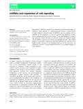 Báo cáo khoa học: miRNAs and regulation of cell signaling