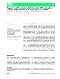 Báo cáo khoa học: Regulation of translational efficiency by different splice variants of the Disc large 1 oncosuppressor 5¢-UTR