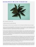 Bài 6: Hình cơ bản số X - Mẫu con nhện - TS. Phạm Đình Tuyển