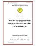 """Luận văn """"Phân tích tác động của đòn bẩy đến rủi ro và tỷ suất sinh lợi tại Cty TNHH Việt An """""""