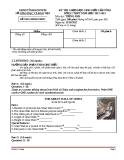 ĐỀ THI CHỌN HỌC SINH GIỎI CẤP TỈNH LỚP 12 THPT NĂM HỌC 2012-1013 MÔN TIẾNG ANH - TỈNH KONTUM