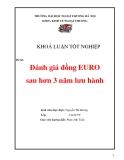 Luận văn: Đánh giá đồng EURO sau hơn 3 năm lưu hành
