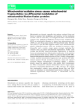 Báo cáo khoa học: Mitochondrial oxidative stress causes mitochondrial fragmentation via differential modulation of mitochondrial fission–fusion proteins
