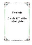 Tiểu luận Cơ cấu KT nhiều thành phần