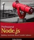 PROFESSIONAL NODE.JS®