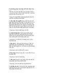 8 phương pháp làm đẹp với tinh dầu ô liu
