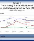What determines banks' sensitivity to money market interest rates?