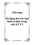 Tiểu luận Đa dạng hóa các loại hình sở hữu trong nền KT P.1