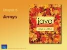 Java programming experience