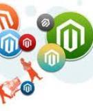 Tìm hiểu về Magento – Quản lý danh mục sản phẩm