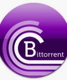 Những điều có thể bạn chưa biết về BitTorrent