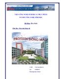 Tiểu luận:Protein đông máu